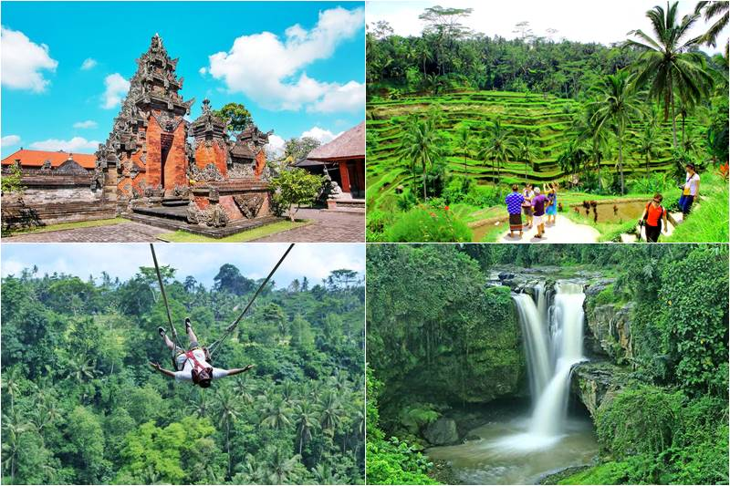Bali Superb Ubud and Swing Tour 2
