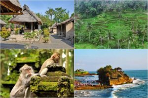 Bali Ubud and Tanah Lot Sunset Tour 3