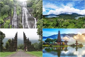 Bali Natural Charm and Waterfall Tour 8