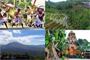 Bali Kintamani Volcano Tour 13