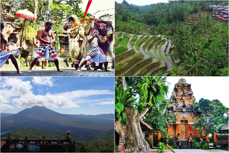 All Bali Private Tours 10