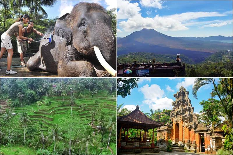 Bali Bathing Elephant and Volcano Tour 2