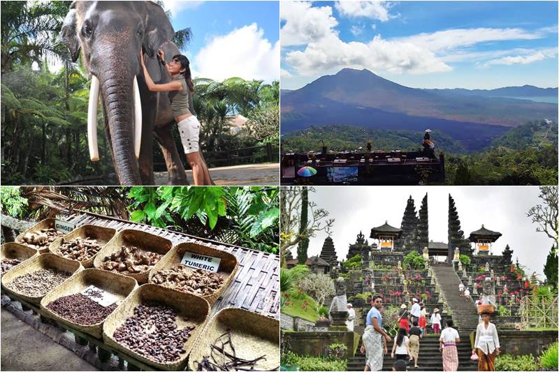 Bali Bathing Elephant and Mother Temple Tour 2