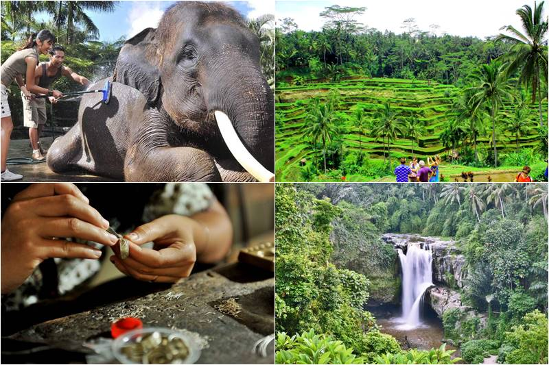 Bali Bathing Elephant and Ubud Arts Shopping  Tour 2