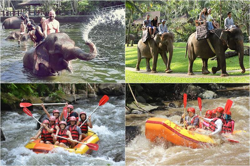 Bali Bathing Elephant and Ayung Rafting Tour 7