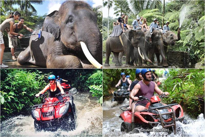 Bali Bathing Elephant and ATV Ride Tour 6