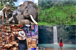 Bali Bathing Elephant and Tibumana Waterfall Tour 3