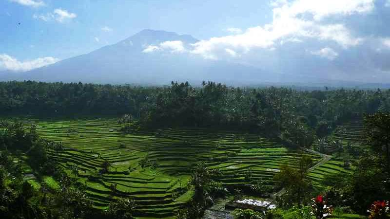 Bali Hidden Cepung Waterfall and Gate of Heaven Temple Tour 3